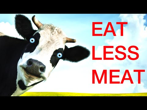 EAT LESS MEAT IS SMART FOR CLIMATE