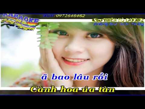 Hái hoa rừng cho em ( Hái trộm hoa rừng) -  KARAOKE HD