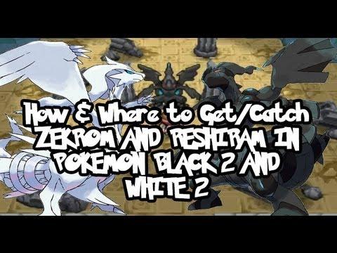 how to catch reshiram in pokemon black