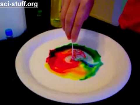cool science projects for 6th graders