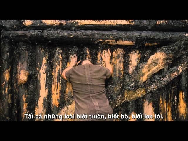 Noah - Đại Hồng Thủy (hậu trường): Muôn thú trong phim