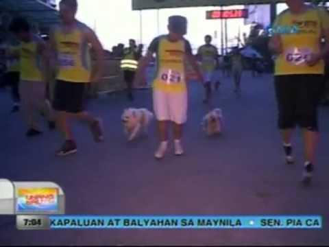 0 UB: 60 pet owners at kanilang mga aso, lumahok sa isang fun run