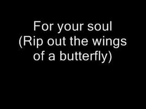 him клип rip out the wings of a butterfl:
