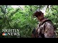 Black Market Weed Could Take Off After California Legalization | NBC Nightly News