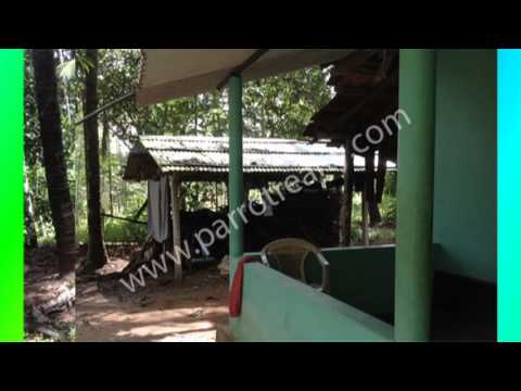 5.5 cent land with small house for sale in near Kenichira.wayanad