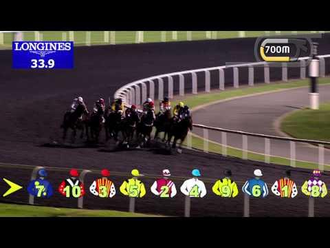 Vidéo de la course PMU ARABIAN ADVENTURES HANDICAP