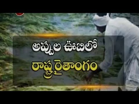 Rice Price Hike Impact Due To  Rains -  TV5