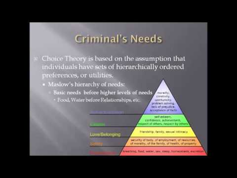 Theories of Criminality:  Rational Choice Theory