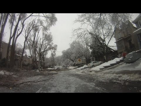 Investigating the Toronto Ice Storm Damage by Bicycle - December 22nd, 2013