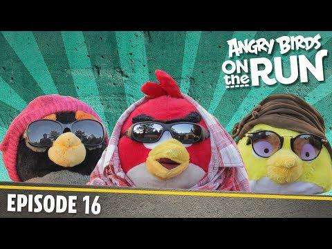 Angry Birds na útěku - Módní přehlídka