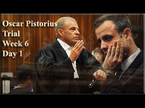 Oscar Pistorius Trial: Monday 14 April 2014, Session 3