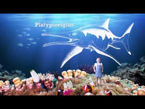 Dig The Tropic - Platypterigius