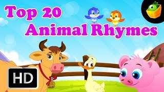 Animal Compiled English Rhymes