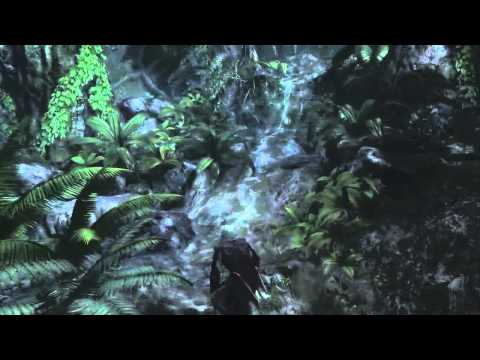 Assassin's Creed IV - Gameplay