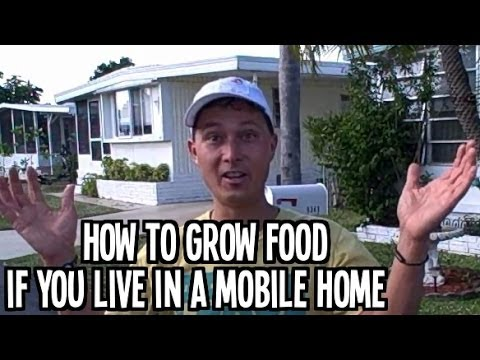 How to Grow an Organic Vegetable Garden at a Mobile Home