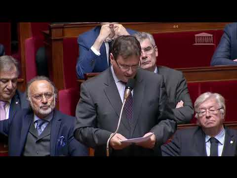 M. Philippe Gosselin - Retour des djihadistes en France