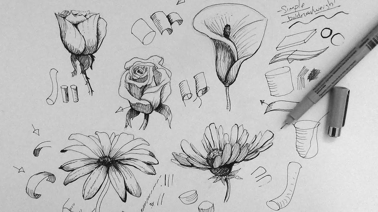 pen ink drawing tutorial how to draw flowers part 1