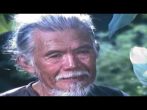 Người Vợ Tham Lam Full HD | Phim Tình Cảm Việt Nam Mới Hay