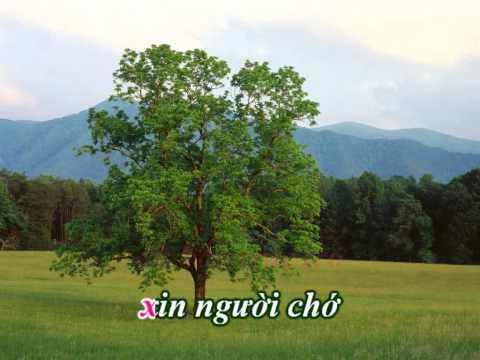 Trach ai vo tinh - Hoa tau - Thanh Trong