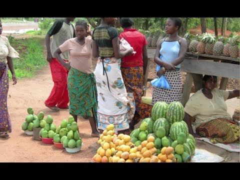 Sustainable African agriculture, putting smallholder famers at the centre of CAADP processes in 2014