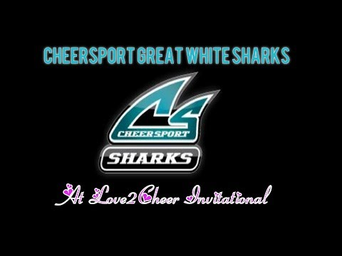 Cheersport Great White Sharks At Love2Cheer