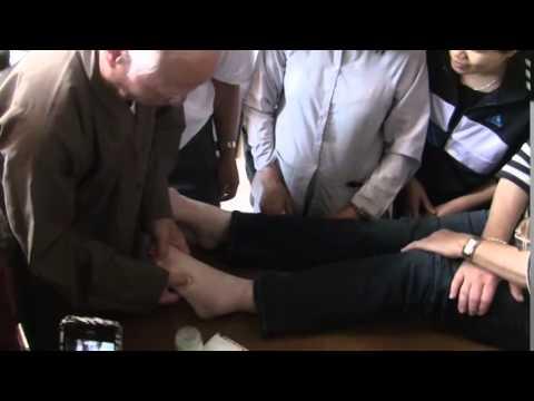 Chua Cac Benh (1/2) : Khi Cong Tinh Do , Do Duc Ngoc  EIAB Germany 2014