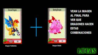 Combinaciones de Dragon City: Dragones Legendarios y Pedidos - YouTube