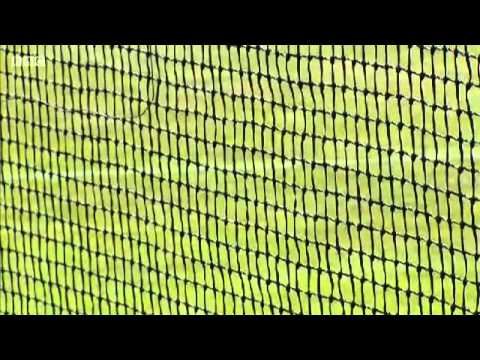 ŠTĚPEC/L.PAES vs. H.Tecau/J.J.Rojer  (Wimbledon 2014 ;R3)