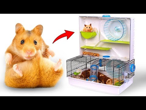 A Lot Of Fun For Your Hamsters: Unboxing Critterville Arcade Hamster Home!