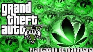 GTA V Plantacion De Marihuana Oculta Easter Egg