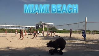 Miami Beach Spring Break Rat Prank