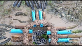 The Best Fish Trap Can Catch A lot of Fish By 7 Bamboo With 5 Water Pipe Deep Hole