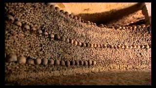 Neuvěřitelné lidské tělo 2007