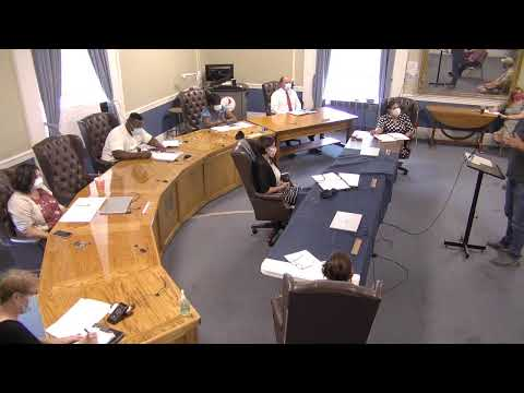 Plattsburgh Public Safety Citizens Review Panel  7-27-20