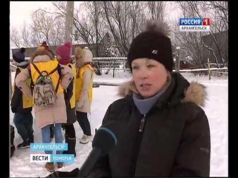 Впервые в Архангельске благотворительную помощь горожане оказывают лошадям!