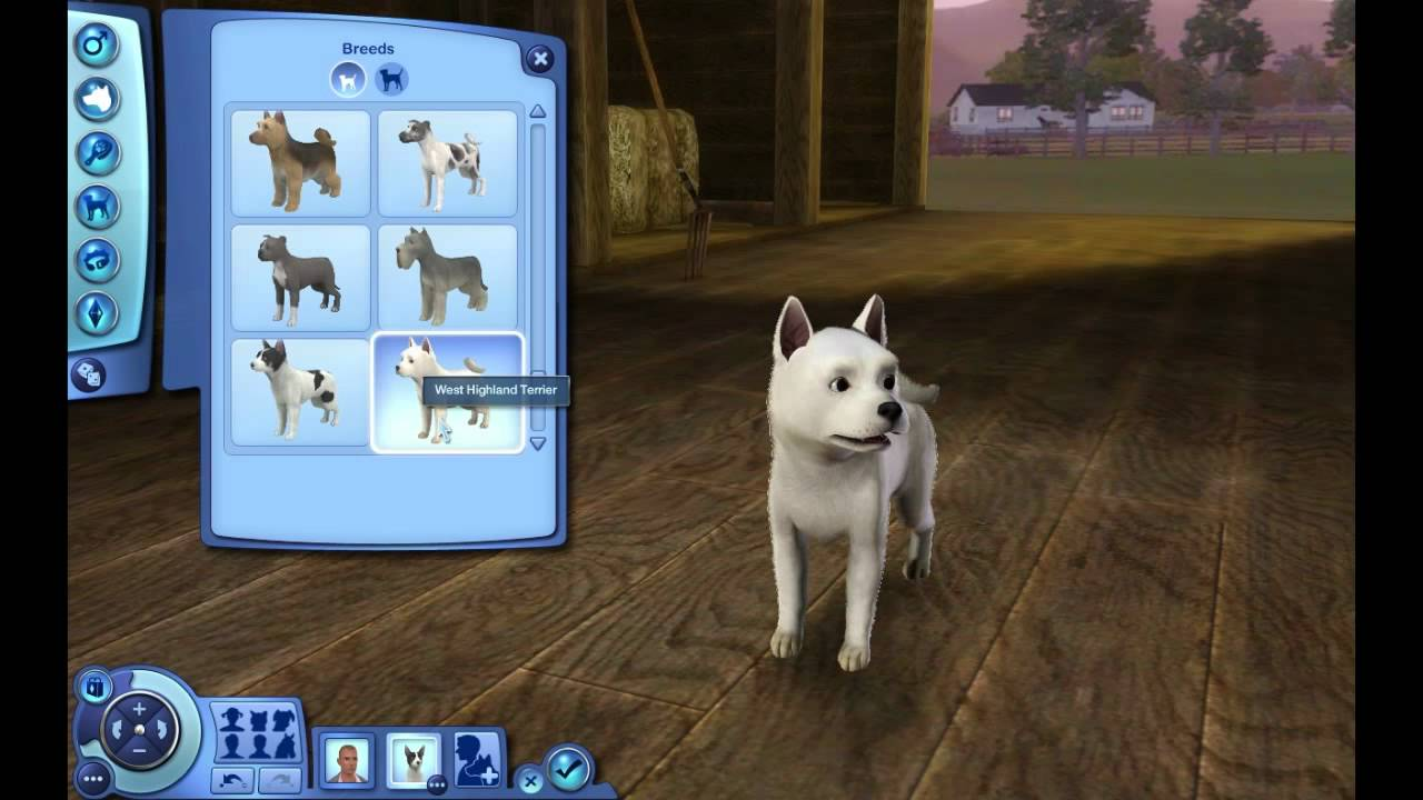 The Sims  Cats And Dogs Adopt Not Working