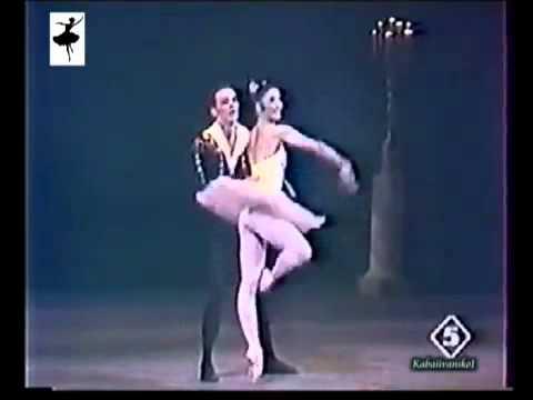 Don Quixote pas de deux  Altynai Asylmuratova Alexander Kurkov