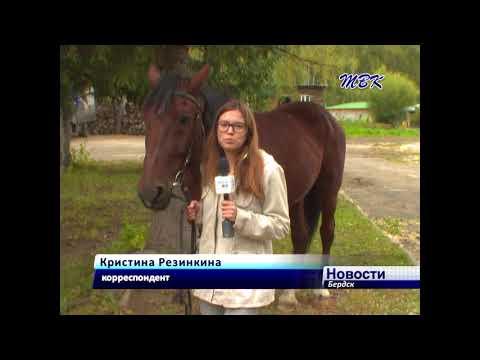 Кубок Клубов Новосибирской области по конному спорту прошел в Бердске