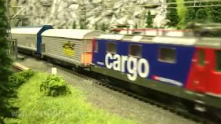 Zugfahrten am Bahnsteig Holtmann - Alle 15 Sekunden ein Güterzug und Personenzug
