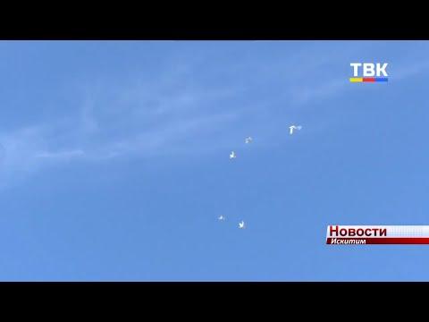 В память о воинах-искитимцах в парке запустили в небо голубей