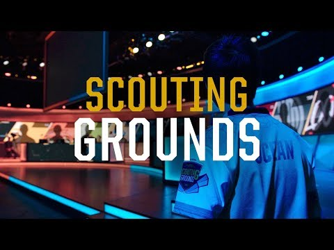Scouting Grounds (2017)