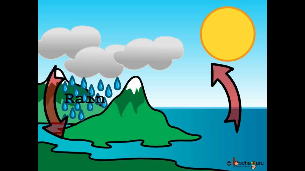 Science - Changing weather - Water cycle - Hindi - YouTube