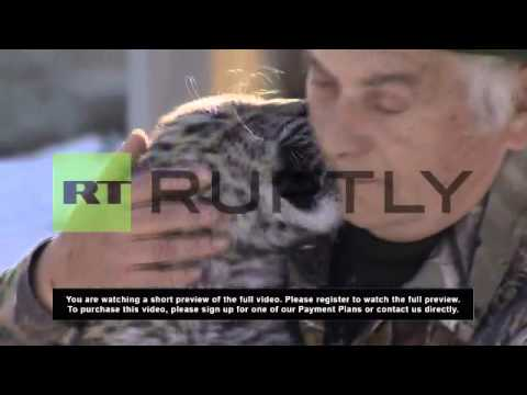 Russia: Endangered Caucasus leopards get new home in Sochi