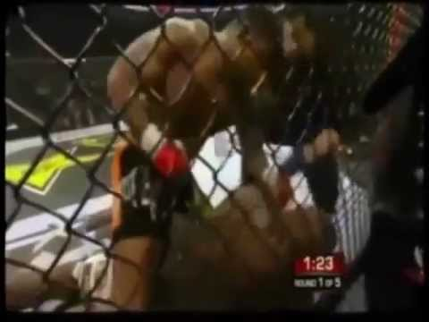 ULTIMATE 141 - BROCK LESNAR vs ALISTAIR OVEREEM - UFC 141.wmv
