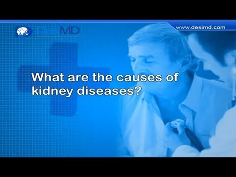 What Are The Causes Of Kidney Diseases? -DesiMD