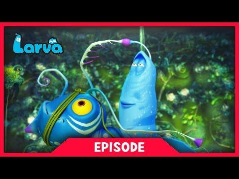 Larva - Larvatar