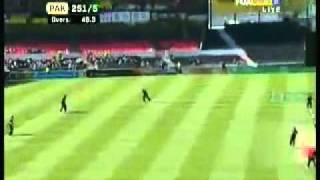 Shahid Afridi 65 Runs Of 25 B (Pakistan VS New Zealand) 29