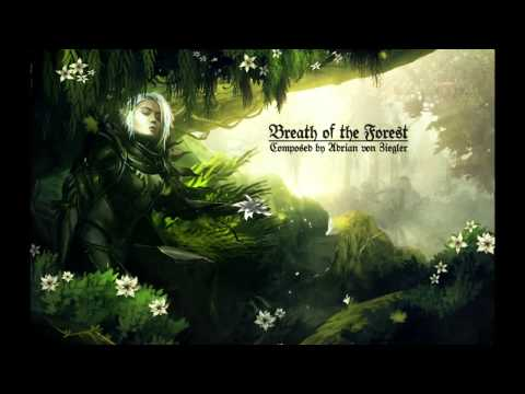 Celtic Music - Breath of the Forest