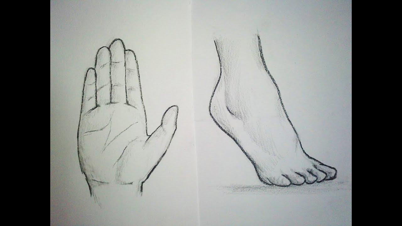 Comment dessiner des mains pieds tutoriel youtube - Comment dessiner un but de foot ...