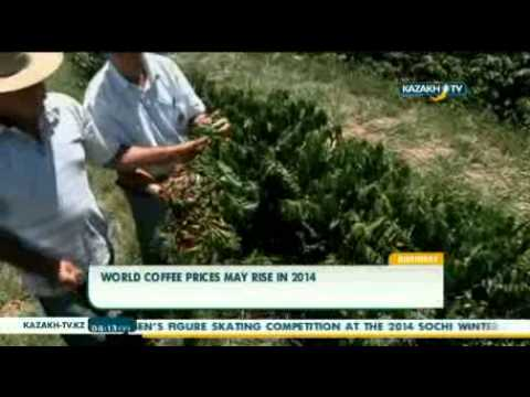 World coffee prices may rise in 2014
